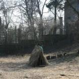 Plocha budoucí zahrady - Děti si postavily salaš