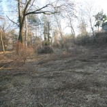 Budování Toušeňské zahrady - Započetí prací, nejdříve je třeba odhalit vlastní reliéf pozemku, to...