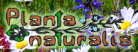http://www.plantanaturalis.com